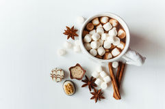 Spicy hot cocoa with marshmallows Royalty Free Stock Photography