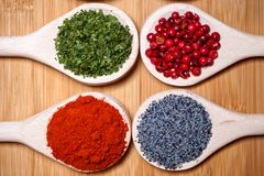 Spicy hot milled pepper, parsely, red peppercorn and poppy seeds Royalty Free Stock Photos