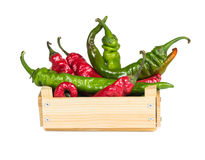 Spicy hot peppers in a wooden box Stock Images