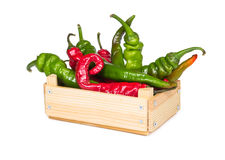 Spicy hot peppers in a wooden box Royalty Free Stock Photography