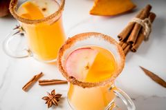Spicy hot pumpkin sangria. Halloween, Thanksgiving. Traditional autumn, winter drinks and cocktails. Spicy hot pumpkin sangria, with apple, cinnamon, anise. On a royalty free stock image
