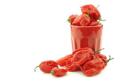 Spicy hot red adjuma peppers in a red ceramic mug Royalty Free Stock Image