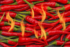 Spicy hot red thai peppers with flames bursting Royalty Free Stock Photography