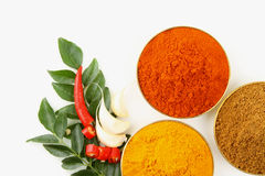 Spicy ingredients Royalty Free Stock Image