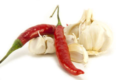 Spicy Ingredients. Whole fresh red spicy Chilli and Garlic head and cloves isolated on a white background Stock Images
