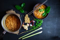 Spicy instant noodles soup And vegetables on a black background stock photography