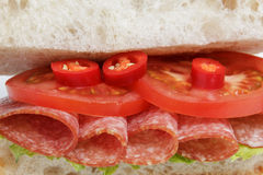Spicy italian sandwich with salami Royalty Free Stock Image