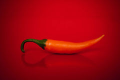 Spicy love Royalty Free Stock Photography