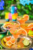 Spicy margarita. Spicy grapefruit margarita on ice in margarita glasses on the table in the garden Stock Photography