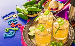 Spicy margarita. Spicy grapefruit margarita cocktail garnished with lime and jalapenos Royalty Free Stock Photo
