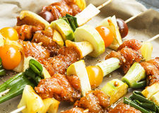 Spicy Marinated Raw Chicken and Vegetable Skewers Stock Photos