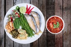 Spicy meat and tomato dip,Nam Prik Ong,with side dish. Of spicy meat and tomato dip,Nam Prik Ong in Thai,Northern style chili and tomato dip ,with side dish as royalty free stock images