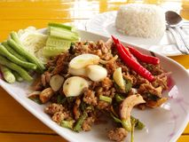 Spicy Minced Duck Salad. Is a Thai food royalty free stock images