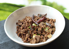Spicy minced meat salad. With nature background Stock Images