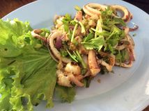 Spicy minced squid Thai Style. Another must try dish when you visit Thailand and local Thai people call this dish Num Tok Royalty Free Stock Photography