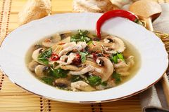 Spicy mushroom soup. Stock Images