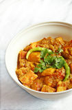 Spicy paneer recipe Stock Photos
