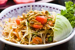 Spicy papaya salad Royalty Free Stock Photos