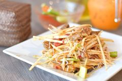 Spicy papaya salad Royalty Free Stock Photography