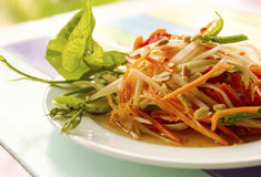 Spicy papaya salad Royalty Free Stock Photo