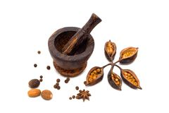 Spicy (papper, nutmeg, cloves) with mortar Stock Image