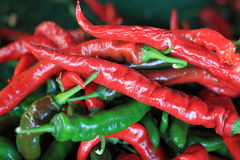 Spicy Pepper Stock Images