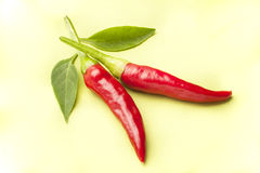 Spicy peppers Stock Photos