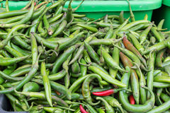 Spicy peppers Royalty Free Stock Photos