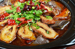 Spicy pig intestines pot. Chinese food- Spicy pig intestines pot Royalty Free Stock Photo