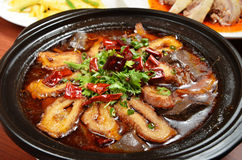 Spicy pig intestines pot Royalty Free Stock Image