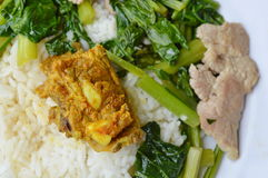 Spicy pork bone curry and stir fried Chinese cabbage on rice Stock Photos