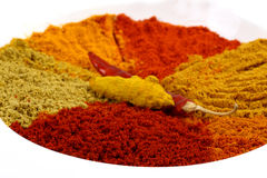 Spicy powders Stock Photos