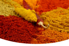 Spicy powders Stock Images