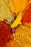 Spicy powders Royalty Free Stock Image