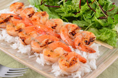Spicy prawn skewers with rice and greens. Spicy barbecued prawn skewers on a bed of white rice and salad greens Royalty Free Stock Images