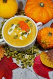 Spicy pumpkin soup in a white bowl, selective focus Royalty Free Stock Photos