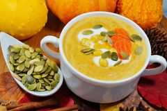Spicy pumpkin soup in a white bowl, selective focus Stock Images