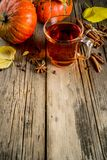 Spicy pumpkin tea royalty free stock photos