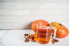 Spicy pumpkin tea royalty free stock images