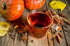 Spicy pumpkin tea stock photography