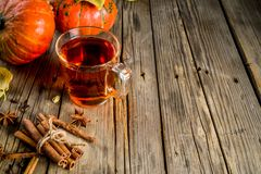 Spicy pumpkin tea. Autumn hot drink glass cup, with pumpkins, cinnamon and spices on old rustic wooden background copy space royalty free stock photos