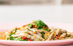 Spicy razor clam with basil food in thai style. Stock Images