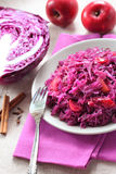 Spicy red cabbage stewed with apples Royalty Free Stock Photography