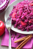 Spicy red cabbage stewed with apples Stock Photography