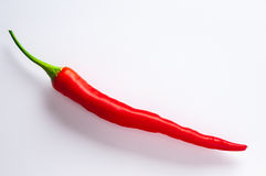 Spicy red chilli. And righ on white background royalty free stock photos