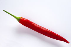 Spicy red chilli. And righ on white background stock photography