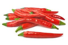Spicy red chillies isolated on white background. Pile of red hot peppers isolated on white background Stock Photography