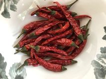 Spicy, red, hot chili peppers. royalty free stock photo