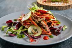 Spicy Salad with Beef, Greens, Pepper, Sesame, Garlic, Chili and. Spicy Salad with Beef, Greens, Bulgarian Pepper, Tomato, Cucumber, Sesame, Garlic and Chili stock image
