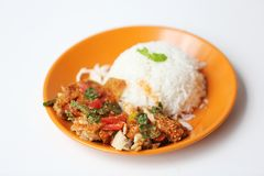 Spicy salad chicken with rice. On a plate royalty free stock image